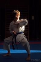 Karate Vereinsmeisterschaft 2013