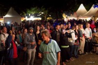 The Unexpectables am Donauinselfest 2015