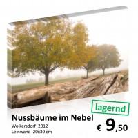 Landschaft Leinwand 20x30 11