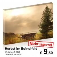 Landschaft Leinwand 20x30 24