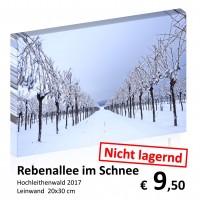 Landschaft Leinwand 20x30 32