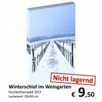 Landschaft Leinwand 20x30 36