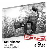 Leinwand 20x30 2019-11 26
