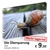 Leinwand 20x30 2019-11 54