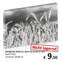 Leinwand 20x30 2019-11 70