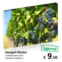 Leinwand 20x30 2019-11 77