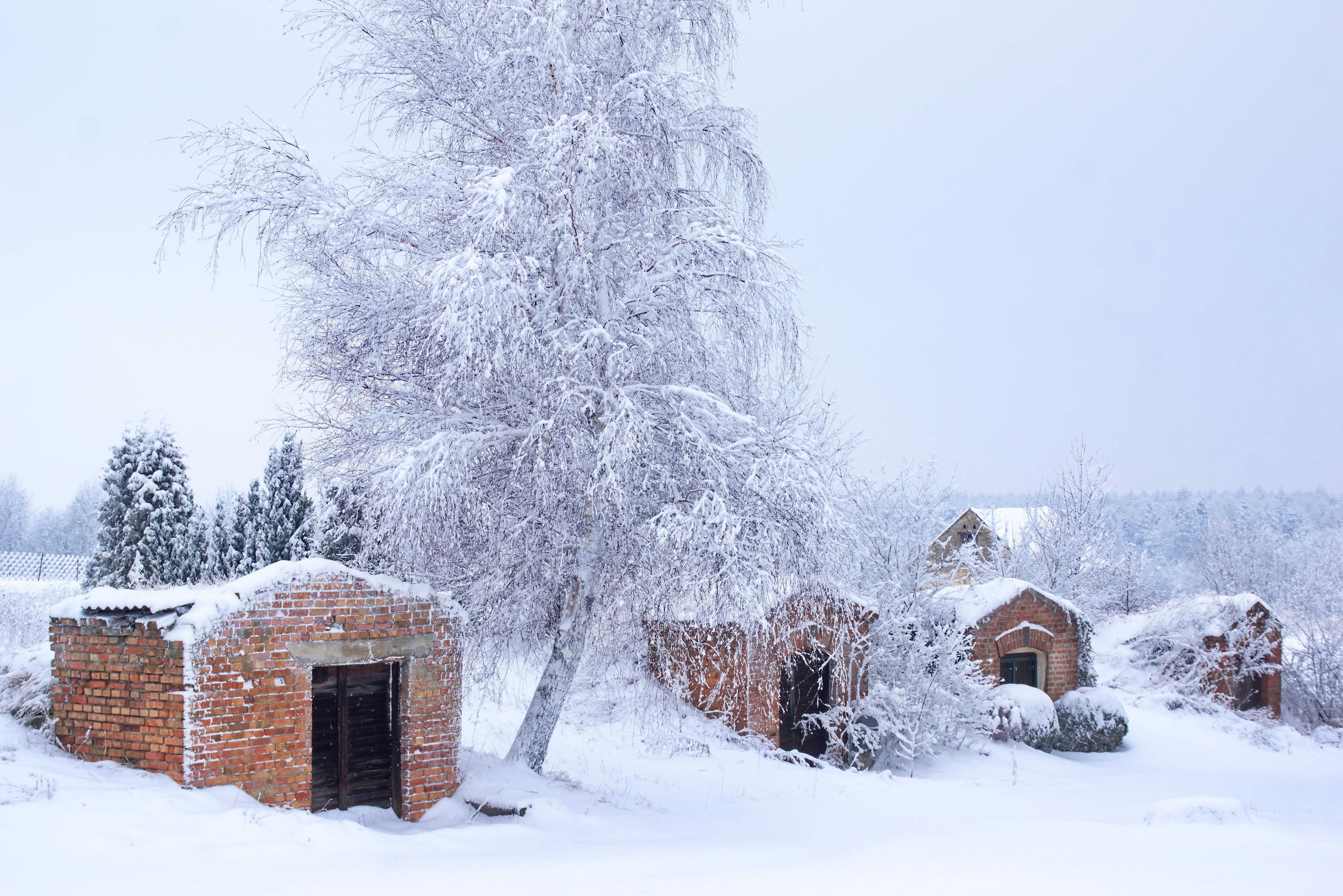 Winterlandschaft in Neubau und Erdpress
